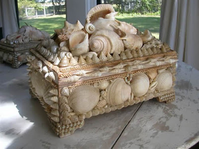 Large seashell Pine Box