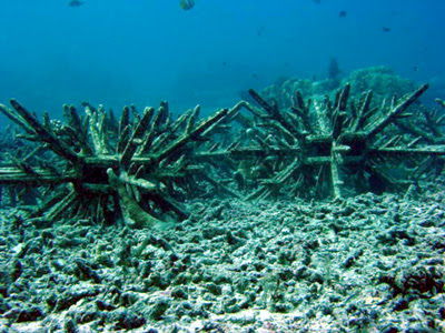 making of artificial reef
