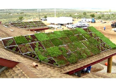 Cool and Creative Green Roofs (21)  17