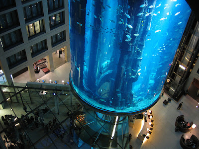 Aquadom is the largest acrylic glass cylinder in the world