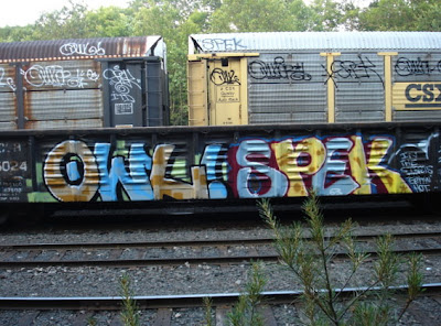 graffiti on trains (9) 5