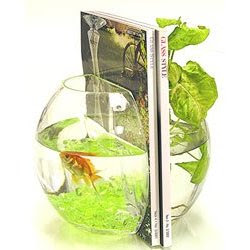 fish bowl book