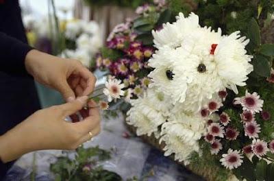 Flower Dog Bouquet (3) 1
