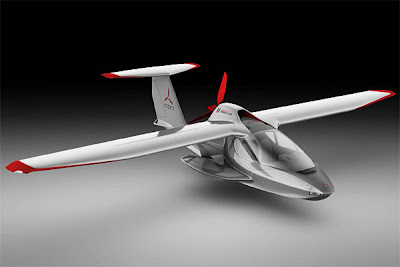 Foldable Plane - ICON A5 (2) 1