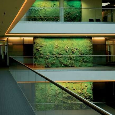Green wall - Indoor Landscaping (5) 4