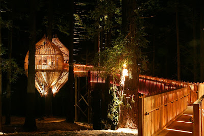 The Yellow Treehouse Restaurant (3) 3