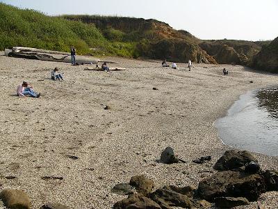 California's Glass Beach (5) 4