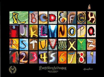 Butterfly Alphabets