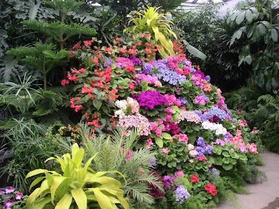 The Butchart Gardens (15) 6