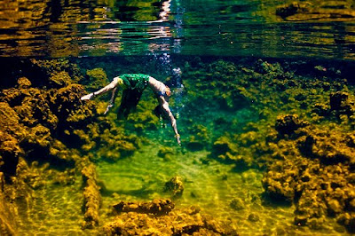 Underwater Photography (21) 6