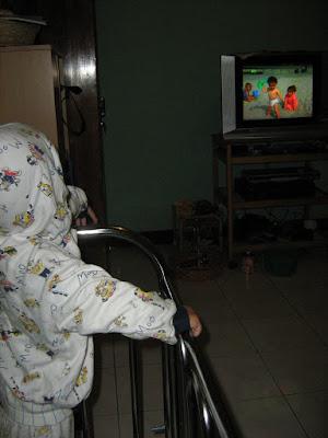 Raka dan televisi