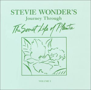 Stevie Wonder - Journey Through The Secret Life Of Plants (disc 2)