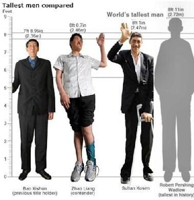 Tallest Man In World Shoe Size