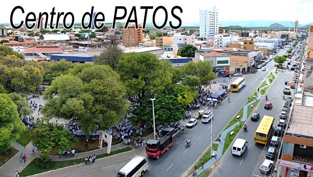 Resultado de imagem para FOTOS DE PATOS PARAIBA