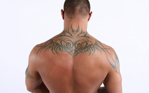 Randy Orton's Back Tattoo  Texture Maps Abstract Tags