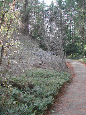 Gentle sloping trail.