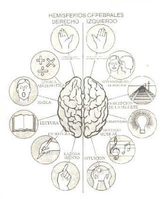 external image hemisferios.jpg