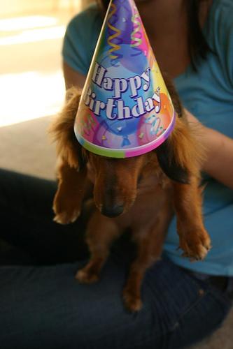 [birthday+nessie]