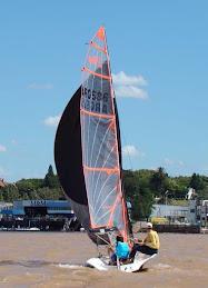 Dingo Sailing 29er