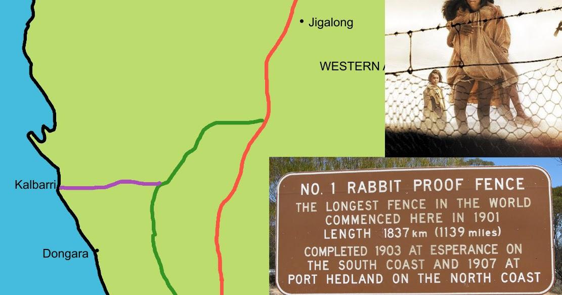 orange journey  rabbit
