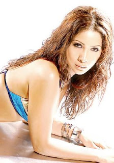 North Indian Actress Kim Sharma Wallpapers,profile,biography,filmography