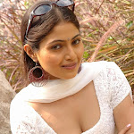 Exclusive Hot N Sexy Latest Wallpapers,photos Of Hot Indian Actress Aishwarya Durgal