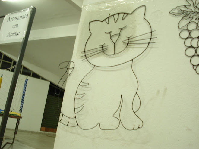 gato de perede