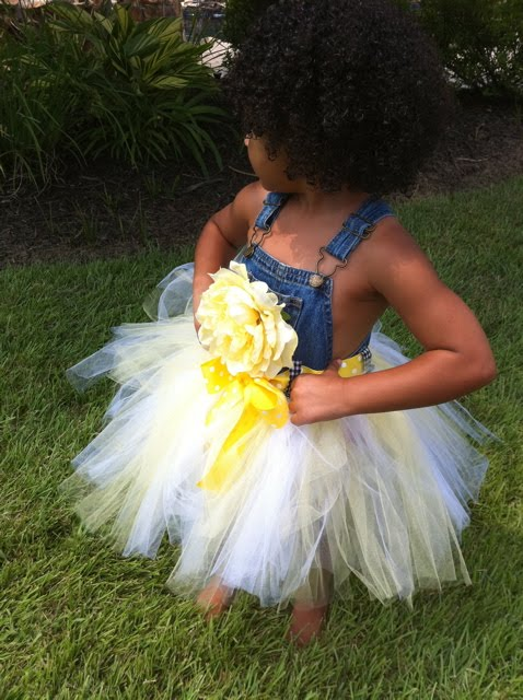 Posh Baby Couture Denim Overall Tutu Dress