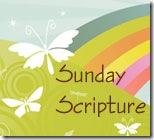 [sunday-scripture1.jpg]