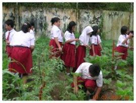 Kebun Sekolah