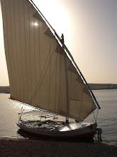 La faluca per seguir el pas del Nil. Aswan