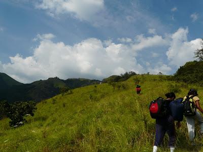 Auli Trekking Tour