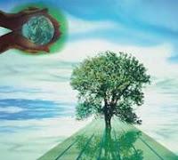Curso de tecnico en gestion ambiental de CCC