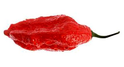 Flavors of Brazil: Ranking chilis - The Scoville Scale