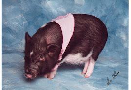 """Ashley""""s Pig"""