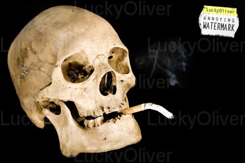 Eco con ciencia - Como eliminar el humo del tabaco en una habitacion ...