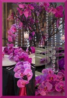 Hawaiian Island Wedding Planners Hot Pink Fuchsia And Onyx Black