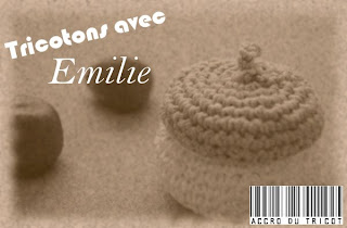 blog tricot