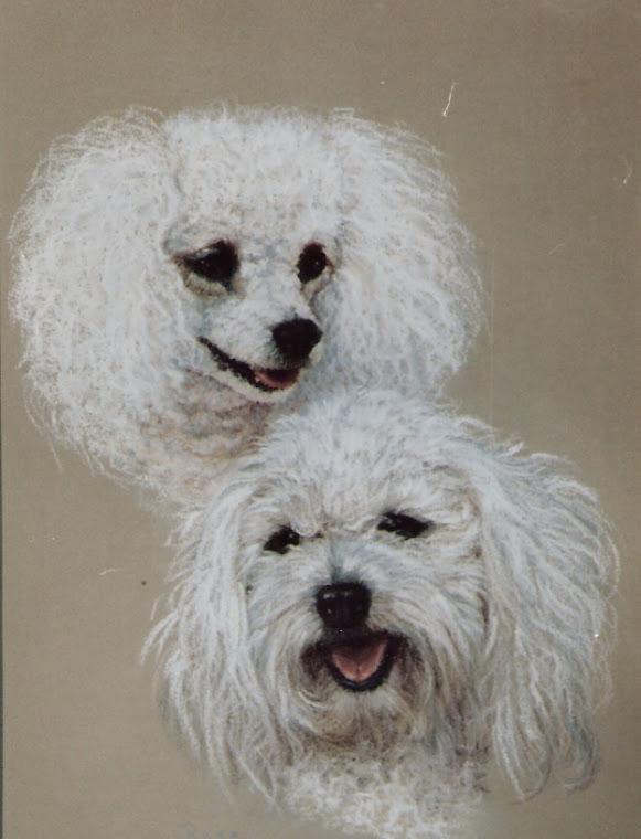 14x18 Pastel (Poodles)