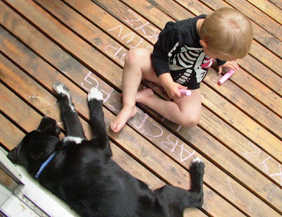 A+boy+and+his+dog Day 157: Doggie Biscotti and Cheese Bliss (for the dog)
