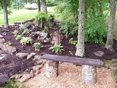 A woodland shade garden design process growing the home for Woodland shade garden designs