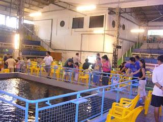 Prawn Fishing in Singapore: Geylang Prawn Fishing Restaurant & Beer