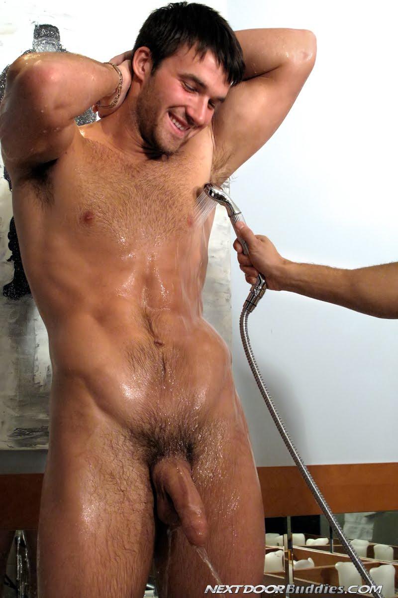 Bull porn