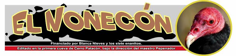 noneco