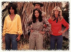 Viejas series de TV '60, '70 y '80!