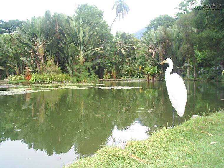 ***  Maravilhas da Natureza  ***