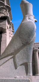 حورس المصرى