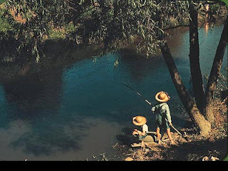 Boys fishing in a bayou, by Marion Post Wolcott, June, 1940