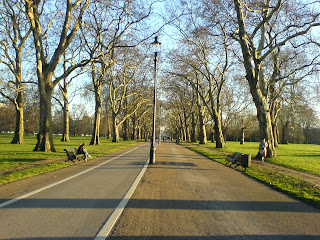 Hyde Park in Winter