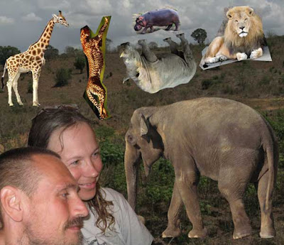 Genuine And Cool Safari Photo